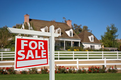 services for real estate professionals